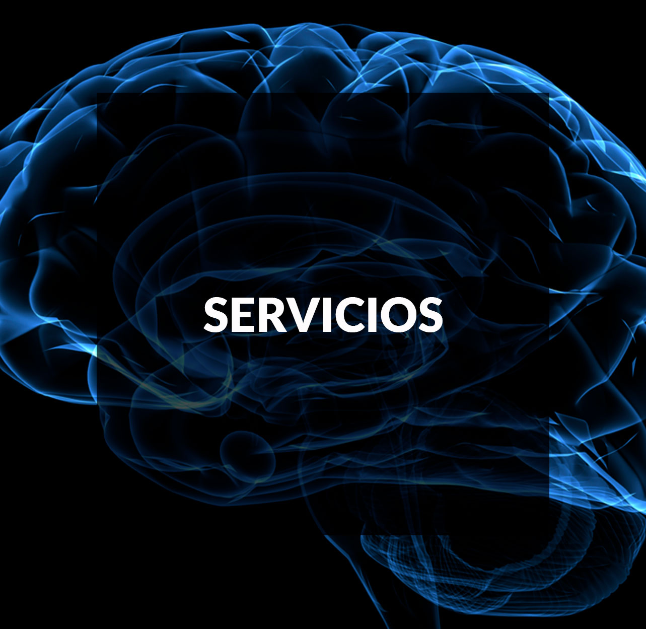 servicios mov